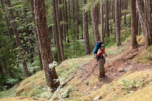 Hiking switchbacks
